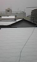 091231_093005yuki.jpg