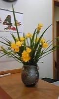 100405_153516konsyu2 furi-jia.jpg